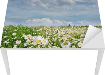 Nálepka na Stůl a Pracovní Stůl Jaro: pole s květinami daisy modrou oblohu a mraky