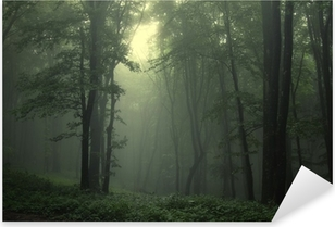 Nálepka Pixerstick Zelený les po dešti