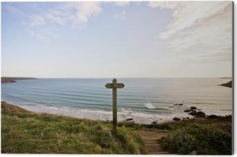 Obraz na Aluminium (Dibond) Pembroke coast parth