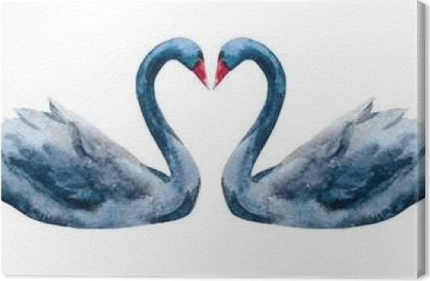 Obraz na plátně Akvarel ručně tažené labutě - Zvířata