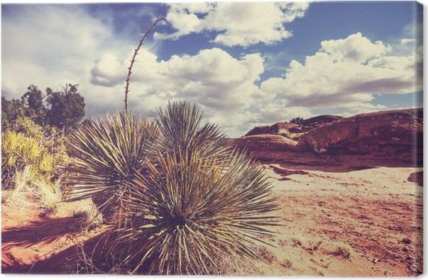 Obraz na plátně Americký krajiny - Příroda a divočina