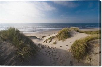 Obraz na Plátně Duny a oceán