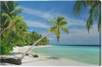 Obraz na Plátně Einsamer Strand mit Palmen