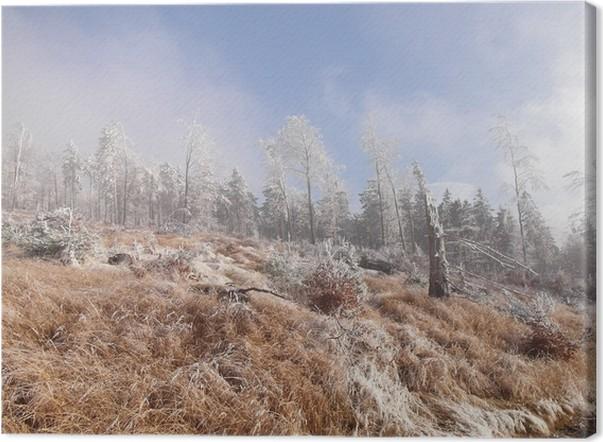 Obraz na plátně Góry003 - Hory