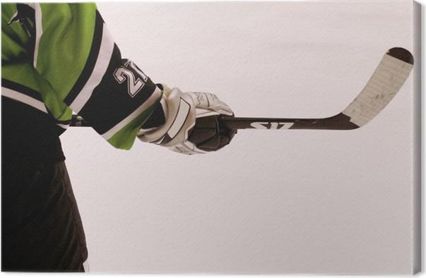 Obraz na plátně Hokejista - Outdoorové sporty