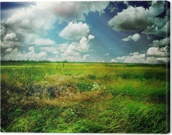 Obraz na Plátně Krásná příroda Rural Landscape