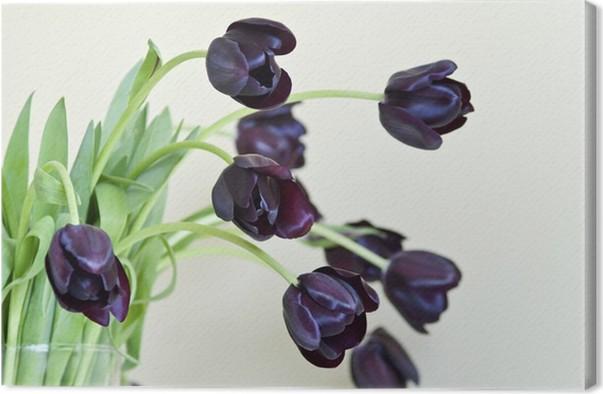 Obraz na plátně Kytice z černé tulipány ve váze - Květiny