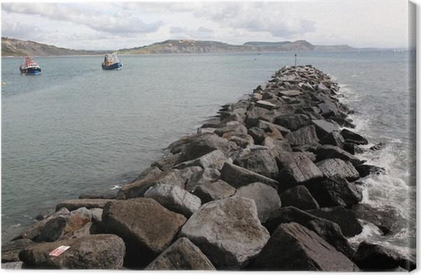 Obraz na plátně Lyme Regis Dorset přístav - Voda