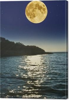 Obraz na plátně Noční scenérie s See a měsíc