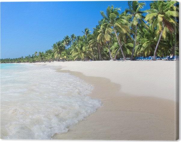 Obraz na plátně Pláž moře - Voda