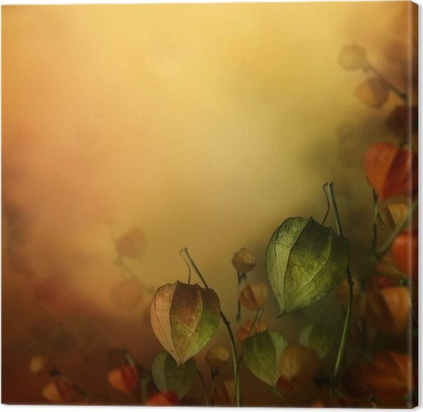 Obraz na plátně Podzim pozadí s lucernou květinami. - Roční období