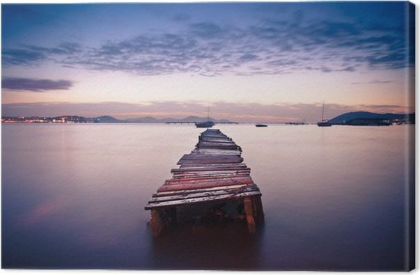 Obraz na plátně Ponton - Voda