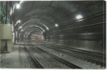 Obraz na plátně Prázdný tunelu metra