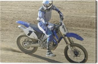 Obraz na plátně Racer63