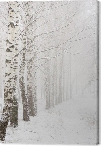 Obraz na plátně Ráno v zimě dřeva - Témata