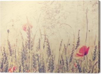 Obraz na plátně Retro vinobraní filtrované divoké louce s květinami máku při východu slunce