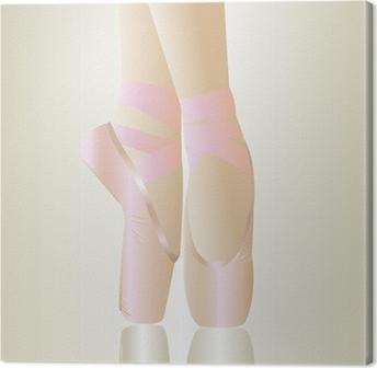 aa48f470d43 Fototapeta Růžová baletní boty • Pixers® • Žijeme pro změnu
