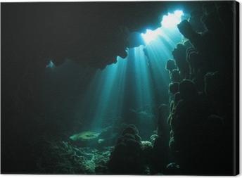 Obraz na plátně Sluneční světlo v jeskyni pod vodou