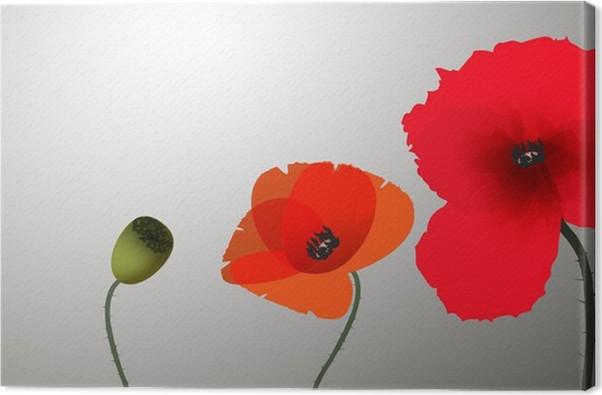 Obraz na plátně Tři vlčí máky na šedém pozadí - Květiny