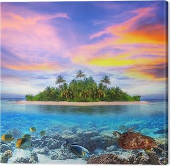 Obraz na Plátně Tropický ostrov Maledivy s mořského života