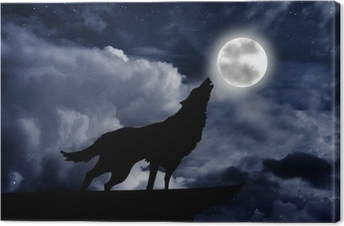 Obraz na plátně Vlčí vytí na měsíc v úplňku