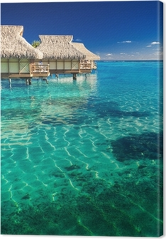 Obraz na Plátně Vodní vily nad tropické útesy