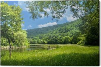 Obraz na Pleksi Latem krajobraz z rzeki i niebieskiego nieba