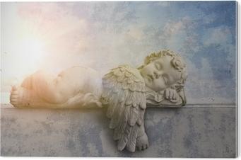 Obraz na Pleksi Śpiąca anioł w słońcu