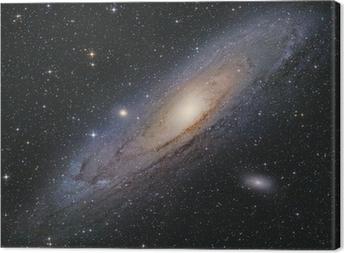 Obraz na płótnie Andromeda Galaxie