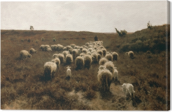 Obraz na płótnie Anton Mauve - Powrót stada, okolice Laren - Reproductions