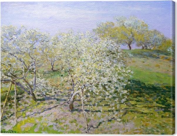 Obraz na płótnie Claude Monet - Kwitnące jabłonie - Reprodukcje