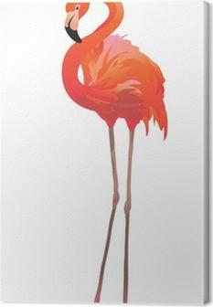 Obraz na płótnie Фламинго / Czerwonak