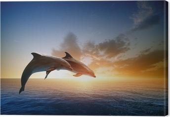 Obraz na płótnie Delfiny skoków