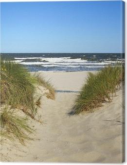 Obraz na płótnie Droga do plaży