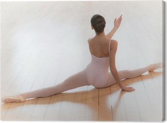 Obraz na płótnie Duża baletnica luka