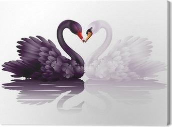 Obraz na płótnie Dwa wdzięczne łabędzie w miłości: czarno-białe serca