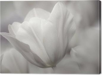 Obraz na płótnie Dzieł sztuki o tematyce zbliżenie tulipany, rozmytymi i ostrych