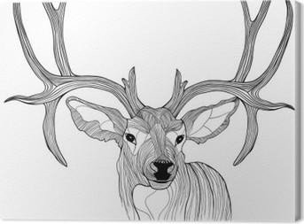 Obraz na płótnie Głowa jelenia