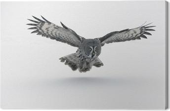 Obraz na płótnie Great Grey Owl. (Strix nebulosa)