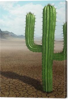 Obraz na płótnie Kaktus na pustyni