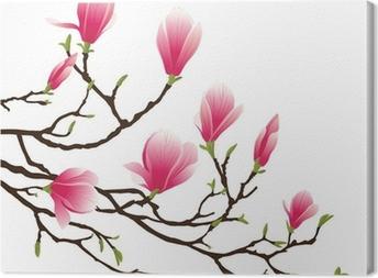 Obraz na płótnie Kwiat magnolii