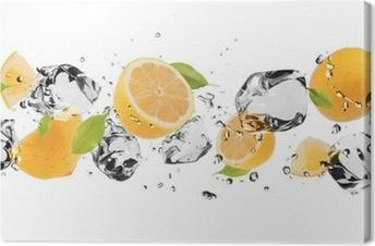 Obraz na płótnie Lodu owoce na białym tle