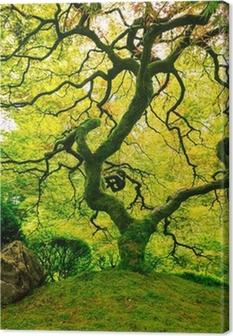Obraz na płótnie Niesamowite Green Tree
