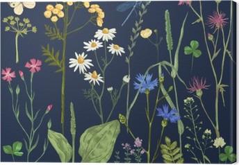 Obraz na płótnie Ręcznie rysowane zestaw z ziół i kwiatów