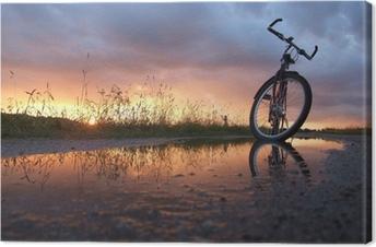 Obraz na płótnie Rower w kałuży