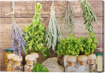 Obraz na płótnie Różne świeże i suszone zioła