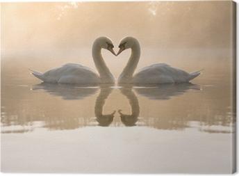 Obraz na płótnie Swans tworzących serce miłość
