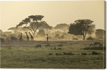 Obraz na płótnie Sylwetka di żyrafa