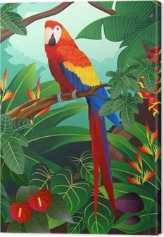 Obraz na płótnie Szczegółowe ilustracji ptaków ara
