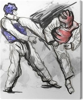 Obraz na płótnie Tae-Kwon Pełnowymiarowa ręcznie rysowane ilustracji